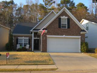 23 Revelstone Way, Chapin, SC 29036 (MLS #420612) :: Exit Real Estate Consultants