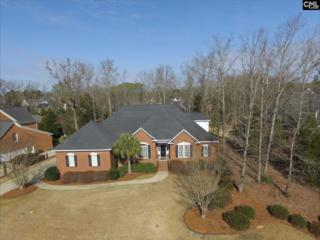 305 Sienna Drive, Chapin, SC 29036 (MLS #420764) :: Exit Real Estate Consultants