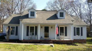 125 Twisted Hill Road, Irmo, SC 29063 (MLS #420820) :: Exit Real Estate Consultants