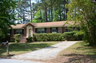 9601 S Chelsea Road, Columbia, SC 29223 (MLS #421593) :: Home Advantage Realty, LLC