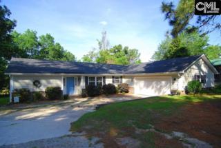 119 Jabay Dr, Columbia, SC 29229 (MLS #425342) :: Home Advantage Realty, LLC
