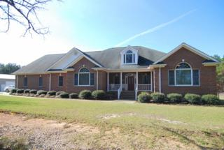 174 Diana Road, Gilbert, SC 29054 (MLS #419809) :: Exit Real Estate Consultants