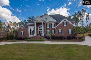 125 ISLAND View Circle, Columbia, SC 29045 (MLS #420302) :: Home Advantage Realty, LLC