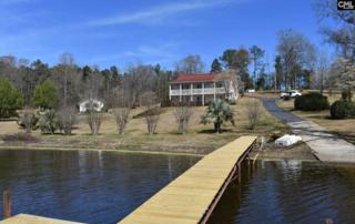 133 Dogwood Shores Road, Batesburg, SC 29006 (MLS #420484) :: Exit Real Estate Consultants