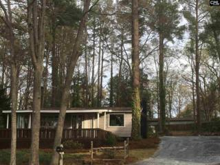 907 Green Meadow Drive, Chapin, SC 29036 (MLS #420493) :: Exit Real Estate Consultants