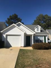 131 Merowey Court, Chapin, SC 29036 (MLS #420783) :: Exit Real Estate Consultants