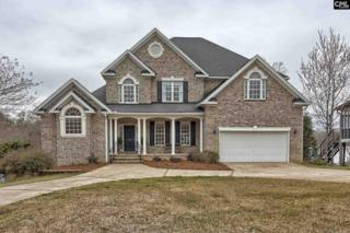 216 Forty Love Point, Chapin, SC 29036 (MLS #420256) :: Home Advantage Realty, LLC