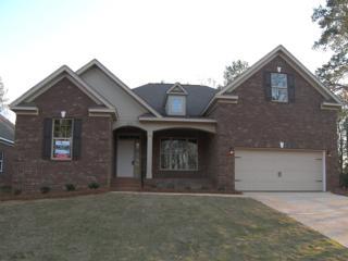 329 Berlandier Lane, Columbia, SC 29212 (MLS #420441) :: Home Advantage Realty, LLC