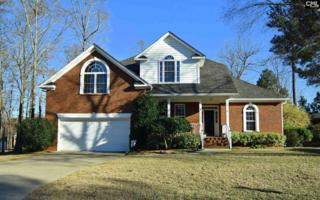 7 Baywood Court, Chapin, SC 29036 (MLS #420706) :: Exit Real Estate Consultants