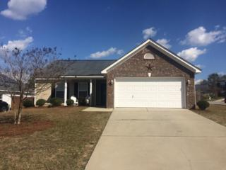 248 Cardinal Pines Lane, Lexington, SC 29073 (MLS #419589) :: Exit Real Estate Consultants