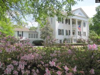 1502 Broad Street, Camden, SC 29020 (MLS #420196) :: Home Advantage Realty, LLC