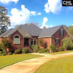 601 E Point Dr, Gilbert, SC 29054 (MLS #418391) :: Exit Real Estate Consultants