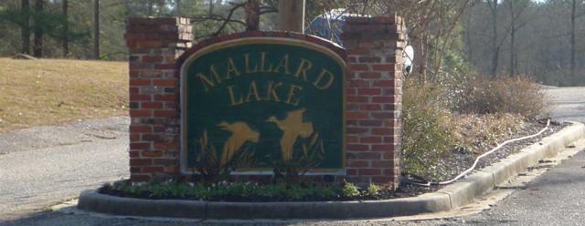 170 Lake Mallard Lane, Camden, SC 29020 (MLS #394644) :: EXIT Real Estate Consultants