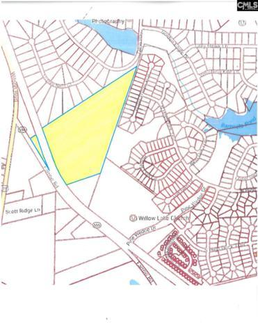 115 Farrow Road, Blythewood, SC 29016 (MLS #399786) :: Home Advantage Realty, LLC