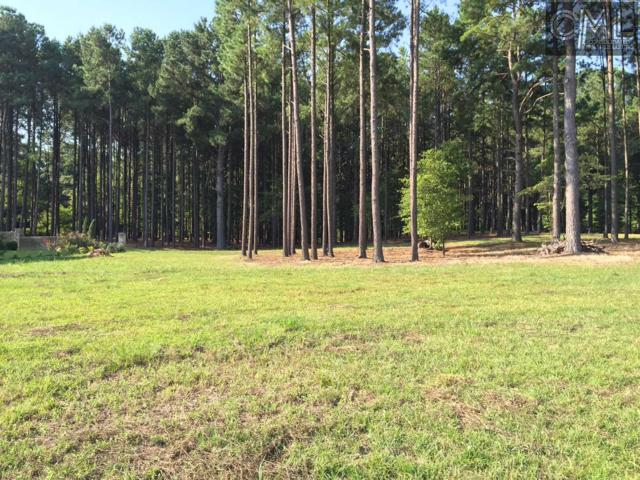 510 Sunny Cove Court Lot 28, Ph, Lexington, SC 29072 (MLS #415383) :: The Olivia Cooley Group at Keller Williams Realty