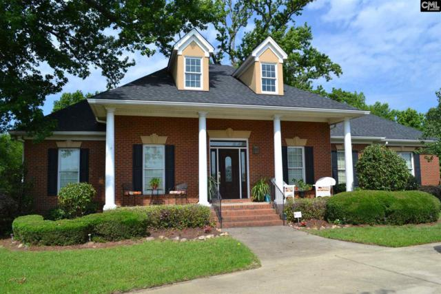 131 Oneal Shealy Road, Gilbert, SC 29054 (MLS #425816) :: Exit Real Estate Consultants