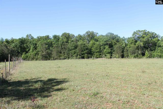 TBD Sid Bickely Road, Chapin, SC 29036 (MLS #426740) :: Home Advantage Realty, LLC