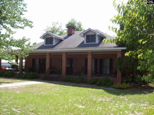1157 Seivern Road, Wagener, SC 29164 (MLS #427018) :: Home Advantage Realty, LLC