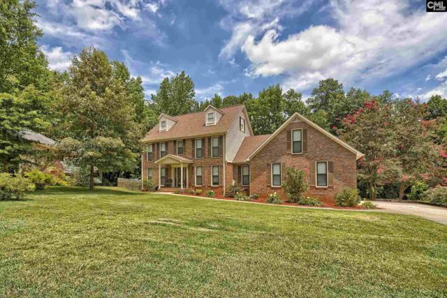 243 Larkspur Road, Columbia, SC 29212 (MLS #427081) :: Home Advantage Realty, LLC