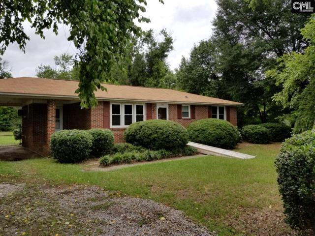 558 Pine Street, Pelion, SC 29123 (MLS #427126) :: Home Advantage Realty, LLC