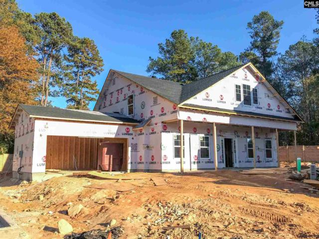664 Pinncle Way Lot 229, Lexington, SC 29072 (MLS #427165) :: Exit Real Estate Consultants