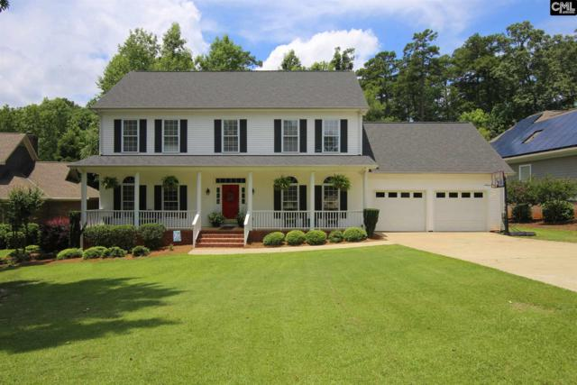 130 Lake Vista Drive, Chapin, SC 29036 (MLS #427279) :: Exit Real Estate Consultants
