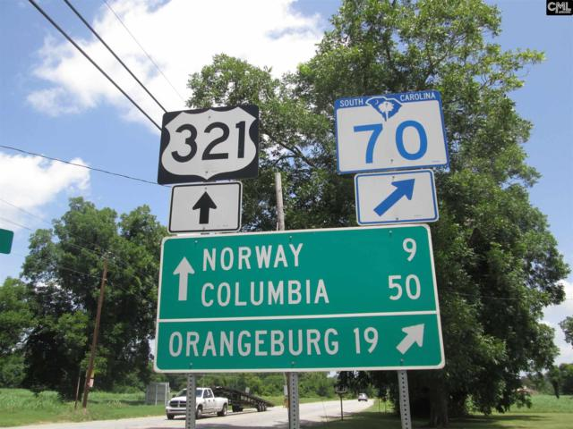 4587 Country Club Road, Denmark, SC 29003 (MLS #427316) :: Home Advantage Realty, LLC
