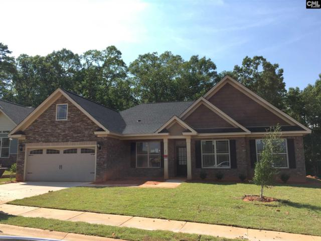 147 Riggs Drive, Lexington, SC 29072 (MLS #427536) :: Exit Real Estate Consultants