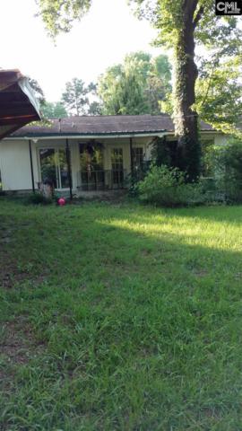 525 Riverside Lane, Cayce, SC 29033 (MLS #428235) :: EXIT Real Estate Consultants