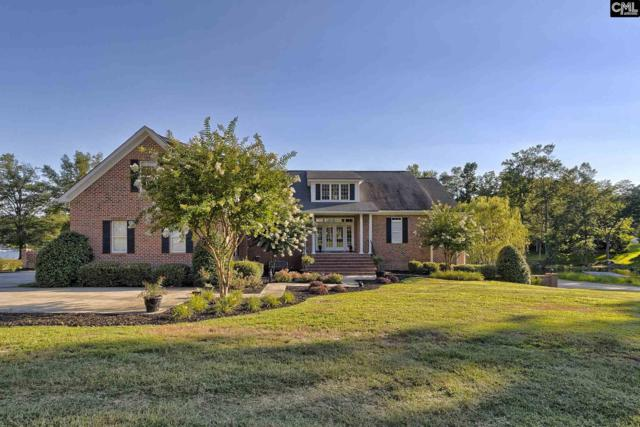 170 Hunter Drive, Chapin, SC 29036 (MLS #428667) :: Exit Real Estate Consultants