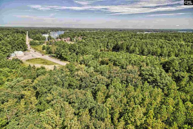 0 378 Highway, Gilbert, SC 29054 (MLS #428842) :: Exit Real Estate Consultants