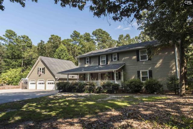 115 Hilton Run Court, Chapin, SC 29036 (MLS #428918) :: Exit Real Estate Consultants