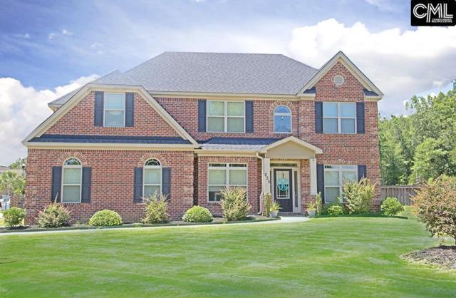 255 Hilton Village Drive, Chapin, SC 29036 (MLS #428996) :: Exit Real Estate Consultants
