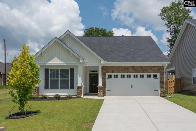 336 Sawyer Court, Irmo, SC 29063 (MLS #429085) :: Exit Real Estate Consultants