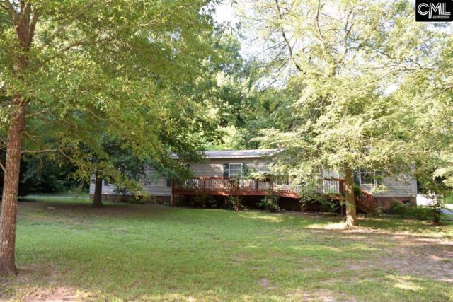1070 White Rock Road, Chapin, SC 29036 (MLS #429145) :: Exit Real Estate Consultants