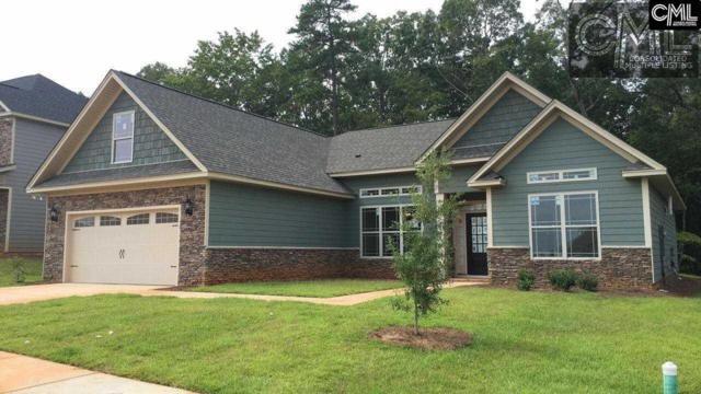 143 Riggs Drive, Lexington, SC 29072 (MLS #429148) :: Exit Real Estate Consultants