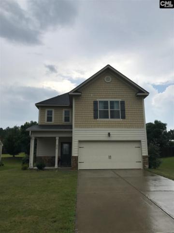 339 Pleasant Creek Court, Lexington, SC 29073 (MLS #429172) :: Exit Real Estate Consultants