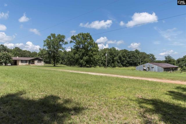 304 Bamboo Road, Newberry, SC 29108 (MLS #430801) :: Home Advantage Realty, LLC