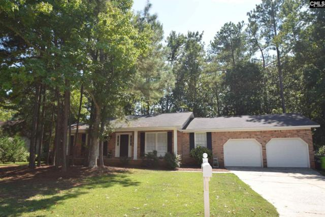 118 Chillingham Road, Irmo, SC 29063 (MLS #431173) :: Exit Real Estate Consultants