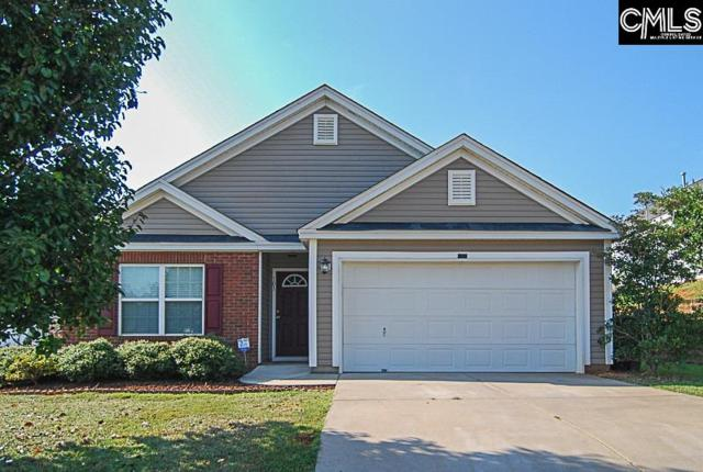 101 Ironcrest Way, Columbia, SC 29212 (MLS #431204) :: Home Advantage Realty, LLC