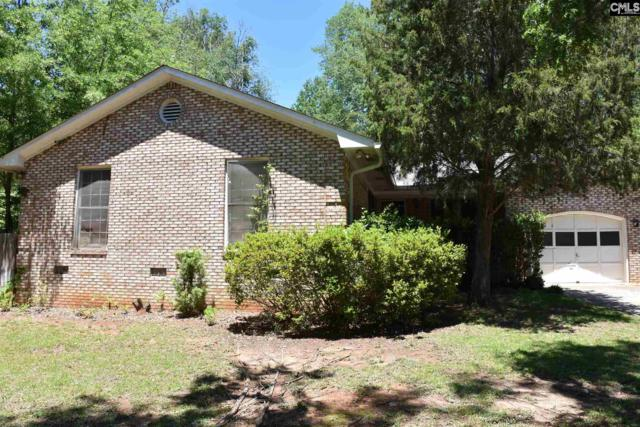 136 Chapelwhite Road, Irmo, SC 29063 (MLS #431274) :: Exit Real Estate Consultants