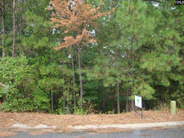 17 Barberry Lane #293, Columbia, SC 29212 (MLS #431792) :: RE/MAX AT THE LAKE