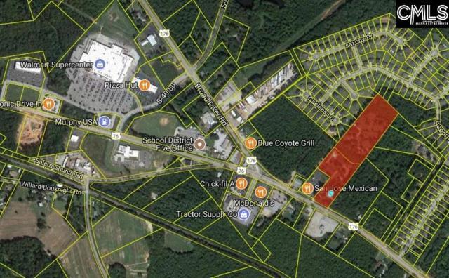 10616 Broad River Road, Irmo, SC 29063 (MLS #432330) :: Home Advantage Realty, LLC