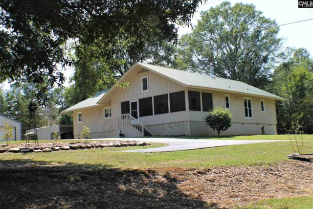 214 Pebblebranch Drive, Chapin, SC 29036 (MLS #432458) :: Exit Real Estate Consultants