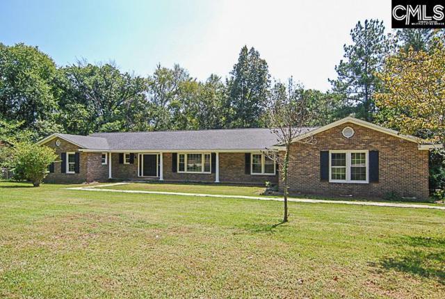 153 Weed Drive, Columbia, SC 29212 (MLS #432477) :: Home Advantage Realty, LLC