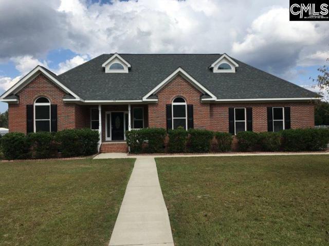 158 Golden Jubilee Road, Gilbert, SC 29054 (MLS #432609) :: Exit Real Estate Consultants