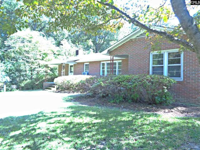 236 Peachland Drive, Gilbert, SC 29054 (MLS #432708) :: Exit Real Estate Consultants