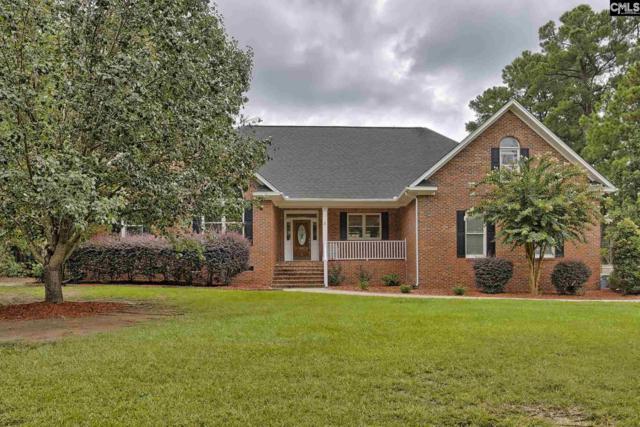 207 Dutchman Shores Circle, Chapin, SC 29036 (MLS #432784) :: Home Advantage Realty, LLC