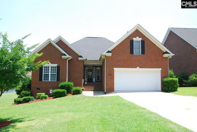 242 Hilton Village Drive, Chapin, SC 29036 (MLS #432799) :: Home Advantage Realty, LLC