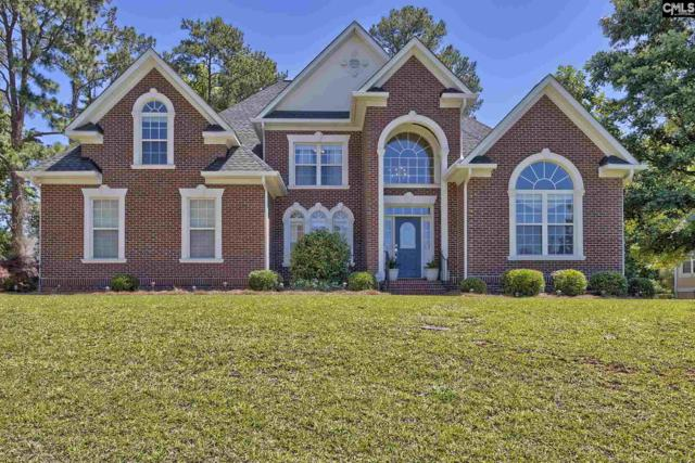 605 Webster Pointe Drive, Chapin, SC 29036 (MLS #432830) :: Home Advantage Realty, LLC
